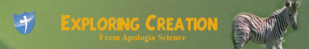 Apologia Exploring Creation