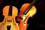 Musical Instruments - Exodus Books