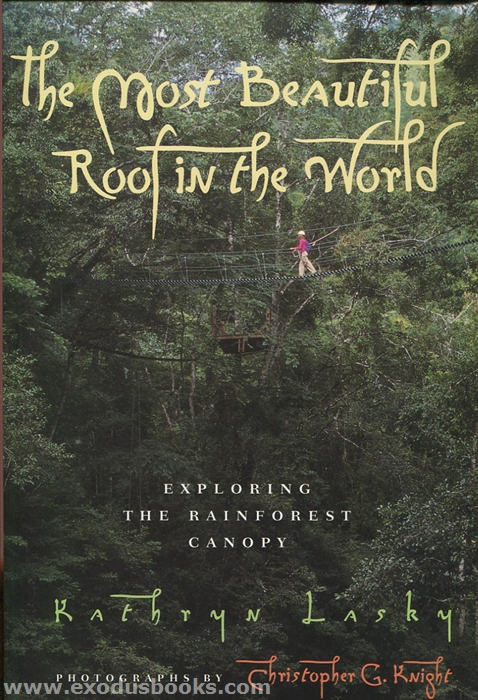Most Beautiful Book Cover In The World : Most beautiful roof in the world exodus books