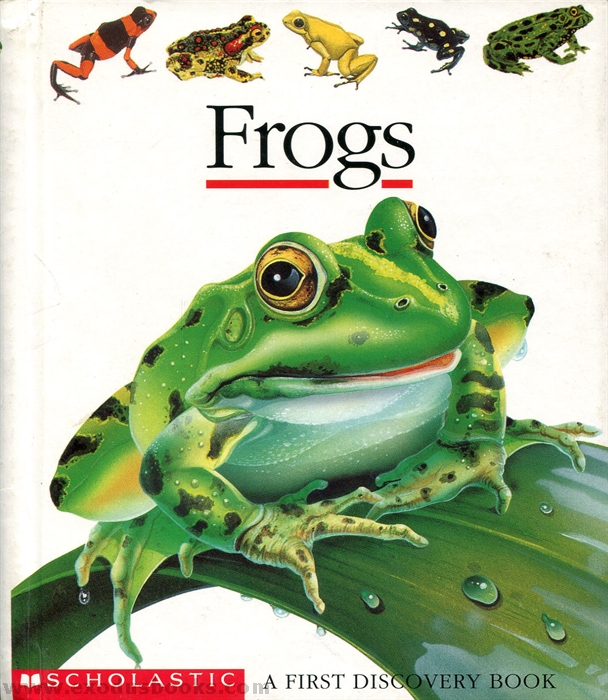 Image Result For Differences Between Tadpoles And Frogs