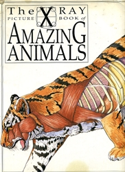 x ray picture book of amazing animals