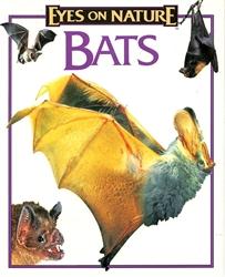 Bat Videos
