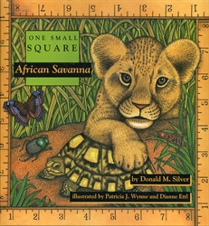 One Small Square: African Savanna