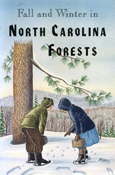 Fall and Winter in North Carolina Forests