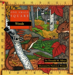 One Small Square: Woods - Exodus Books