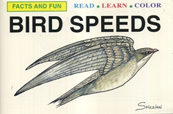 Bird Speeds