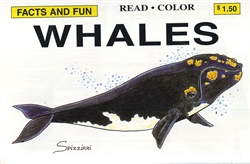 Facts and Fun: Whales