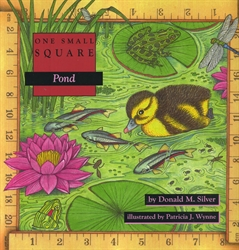 One Small Square: Pond