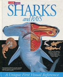 Look Inside Sharks and Rays