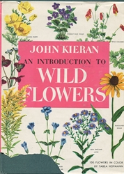 Introduction to Wild Flowers