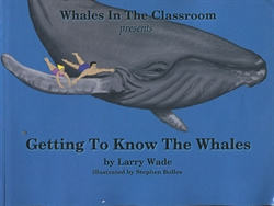 Getting to Know the Whales