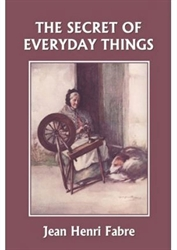 Secret of Everyday Things