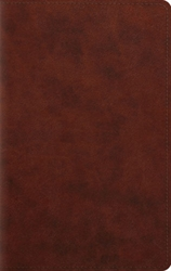 ESV Large Print Personal Size Bible (TruTone, Chestnut)