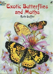 Exotic Butterflies and Moths - Coloring Book
