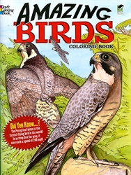 Amazing Birds - Coloring Book