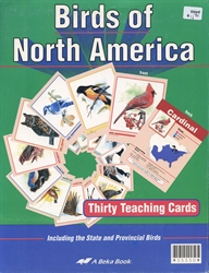 Birds of North America Flashcards (old)