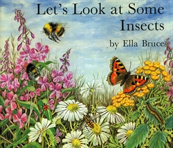 Let's Look at Some Insects