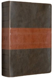 ESV Study Bible - Two-toned Leather