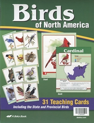 Birds of North America Flashcards