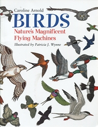 Birds: Nature's Magnificent Flying Machines