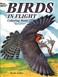 Birds in Flight - Coloring Book