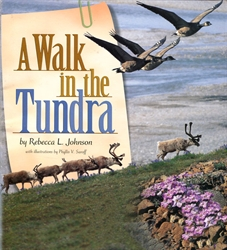 Walk In the Tundra