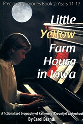 Little Yellow Farm House in Iowa