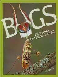 Bugs Big & Small God Made Them All