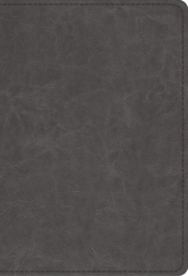 ESV Student Study Bible (Trutone Grey)
