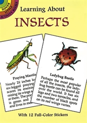 Learning About Insects - Activity Book
