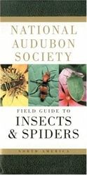 National Audubon Society Field Guide to Insects & Spiders