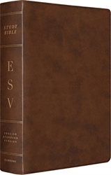 ESV Study Bible Large Print - Brown Leather