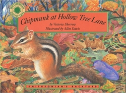 Chipmunk at Hollow Tree Lane
