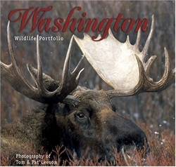 Washington Wildlife Portfolio