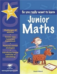 So You Really Want to Learn Junior Maths