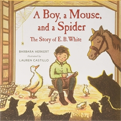Boy, a Mouse, and a Spider