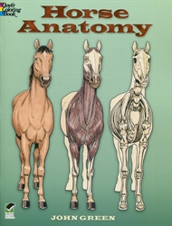 Horse Anatomy - Coloring Book